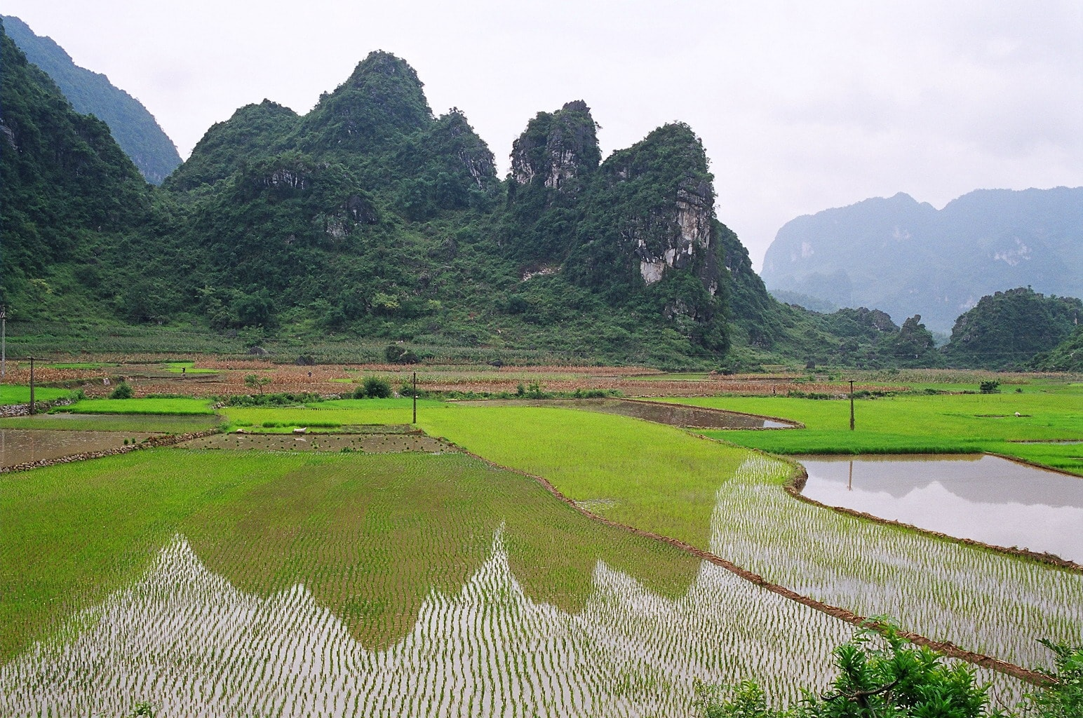 Bán nhớt Repsol chất lượng cao tại Cao Bằng