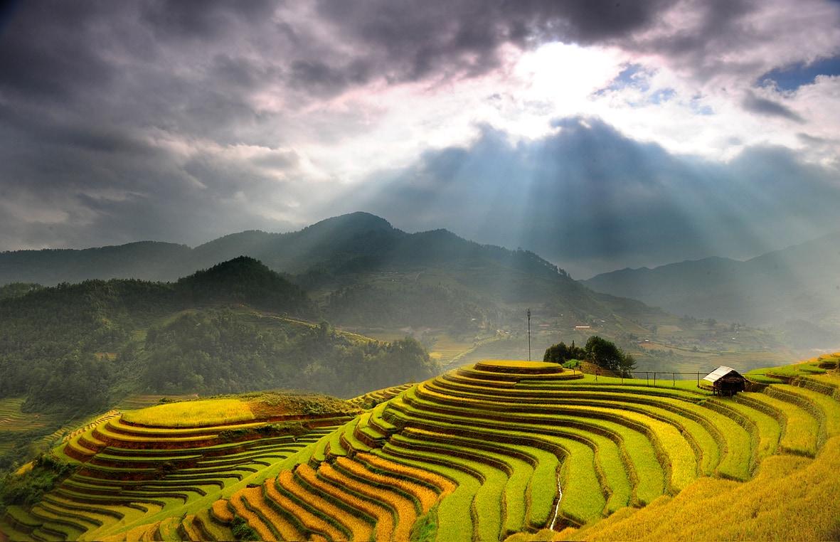 Bán nhớt Repsol chất lượng cao tại Hà Giang