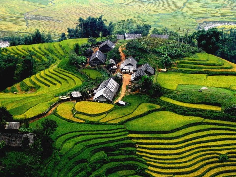 Bán nhớt Repsol chất lượng cao tại Lào Cai