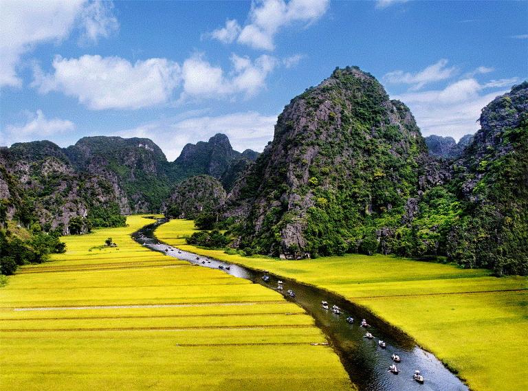 Bán nhớt Repsol chất lượng cao tại Ninh Bình