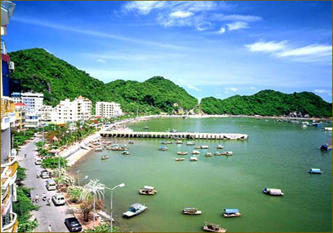 Bán nhớt Repsol chất lượng cao tại Quảng Ninh